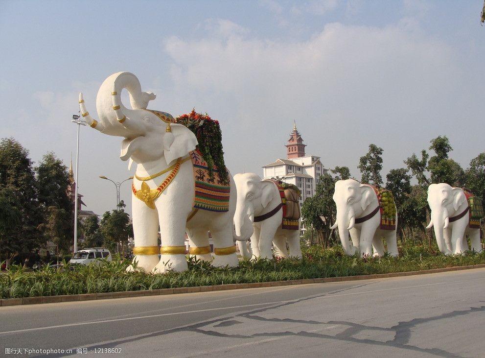 西双版纳的大象